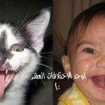 صور مضحكه 6