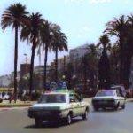 MOR Tangier1