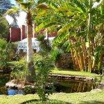 الريف المغربي10