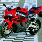 دراجات العالم3 Size:100.50 Kb Dim: 676 x 450