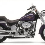 Harley Fat Boy Size:69.20 Kb Dim: 800 x 446