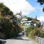 South Island Size:59.10 Kb Dim: 560 x 420