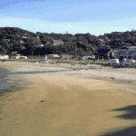 Stewart Island Size:36.40 Kb Dim: 560 x 364