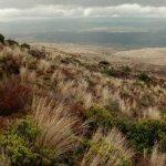 Tongariro Crossing Size:39.30 Kb Dim: 444 x 500