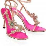 حذاء Size:11.60 Kb Dim: 230 x 345