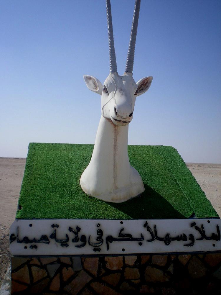 المها العربية Size:319.10 Kb Dim: 750 x 1000
