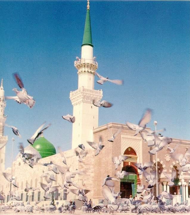مسجد الرسول عليه افضل الصلاة والسلام 13_68071_1142010704
