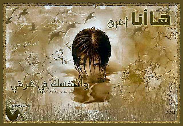 ������ ������ 2013 ������ 1741_101055_11698542