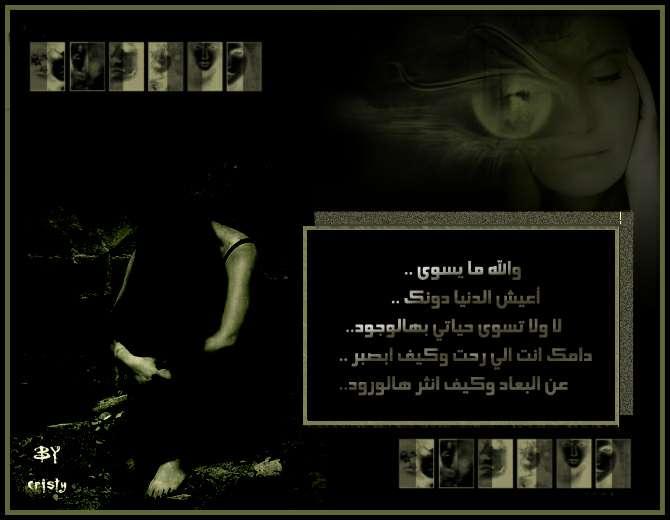 ������ ������ 2013 ������ 1741_101055_11698543