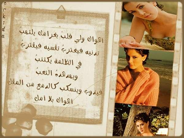 ������ ������ 2013 ������ 1741_101055_11698547
