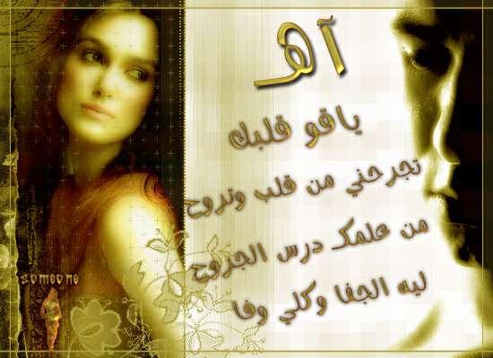 ������ ������ 2013 ������ 1741_101055_11698548
