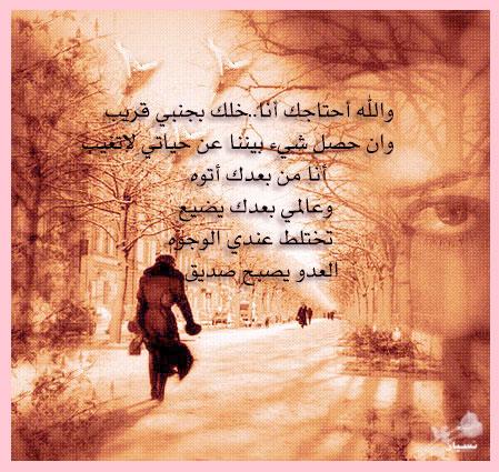 ������ ������ 2013 ������ 1741_101055_11714691