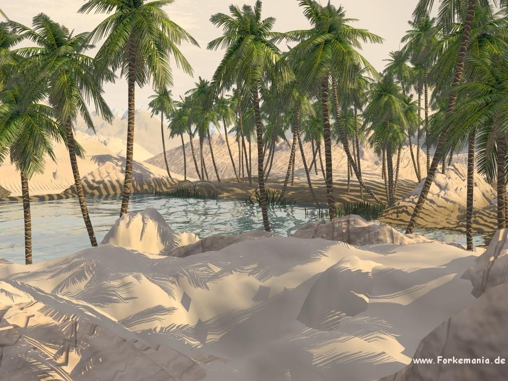 شاطئ الراحة ؟؟؟؟