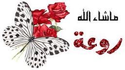 تيزي وزو  جنة الجزائر تفضلوا  40_222350_1293089892