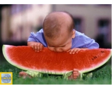 فائدة تناول فاكهة البطيخ 40_43279_1279741428.