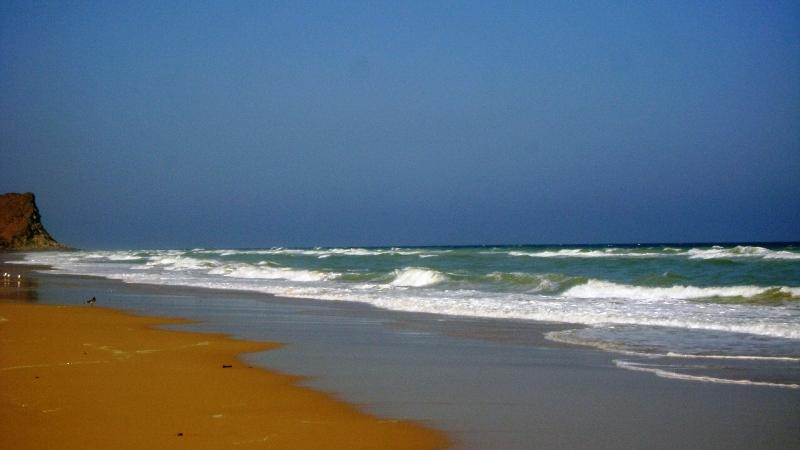 شاطئ السيفة Size:194.40 Kb Dim: 800 x 450