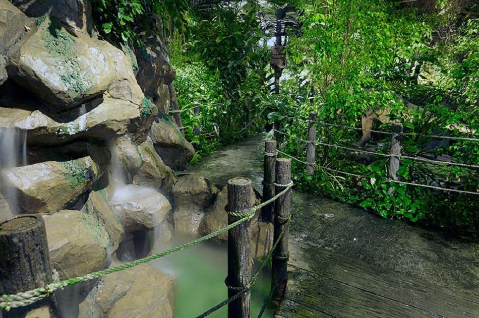 مطعم الغابات المطيرة Size:326.70 Kb Dim: 950 x 631
