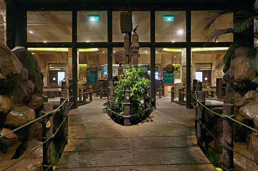 مطعم الغابات المطيرة Size:73.10 Kb Dim: 900 x 598