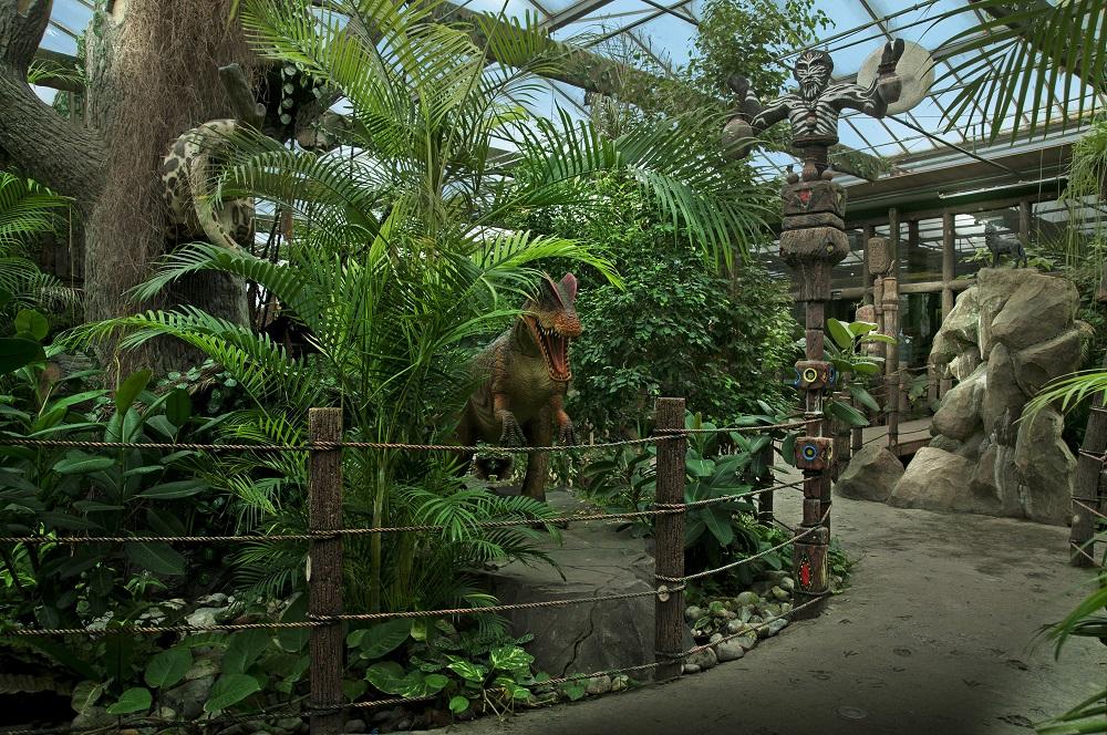 مطعم الغابات المطيرة Size:439.70 Kb Dim: 1000 x 664