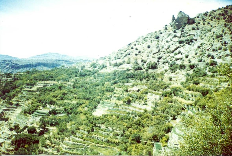 الجبل الأخضر Size:356.90 Kb Dim: 1179 x 795
