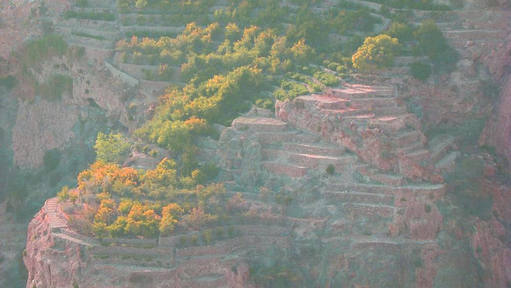 الجبل الأخضر Size:236.40 Kb Dim: 1000 x 563