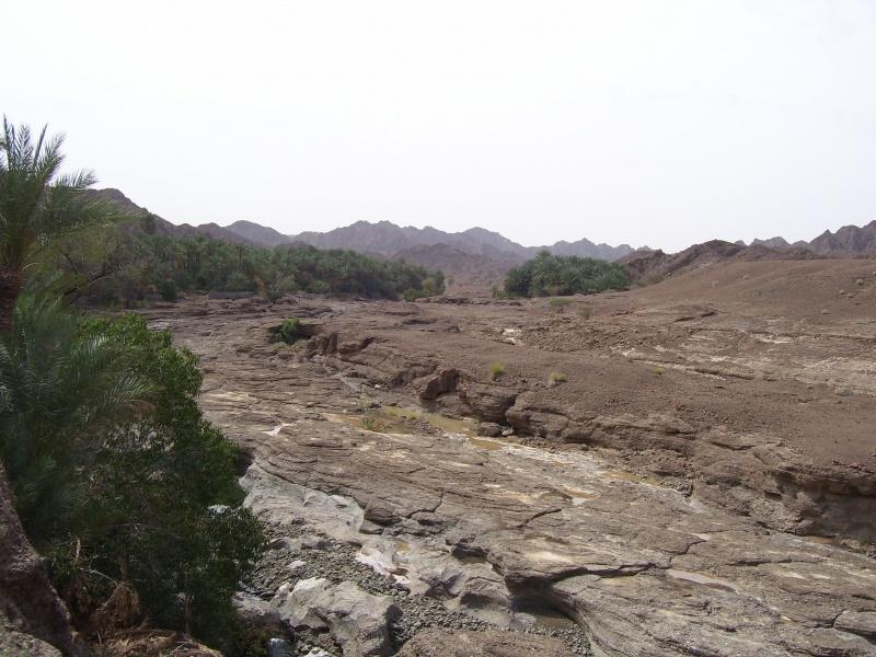 وادي قميراء Size:190.80 Kb Dim: 800 x 600
