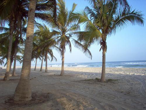شاطئ السوادي Size:43.90 Kb Dim: 500 x 375