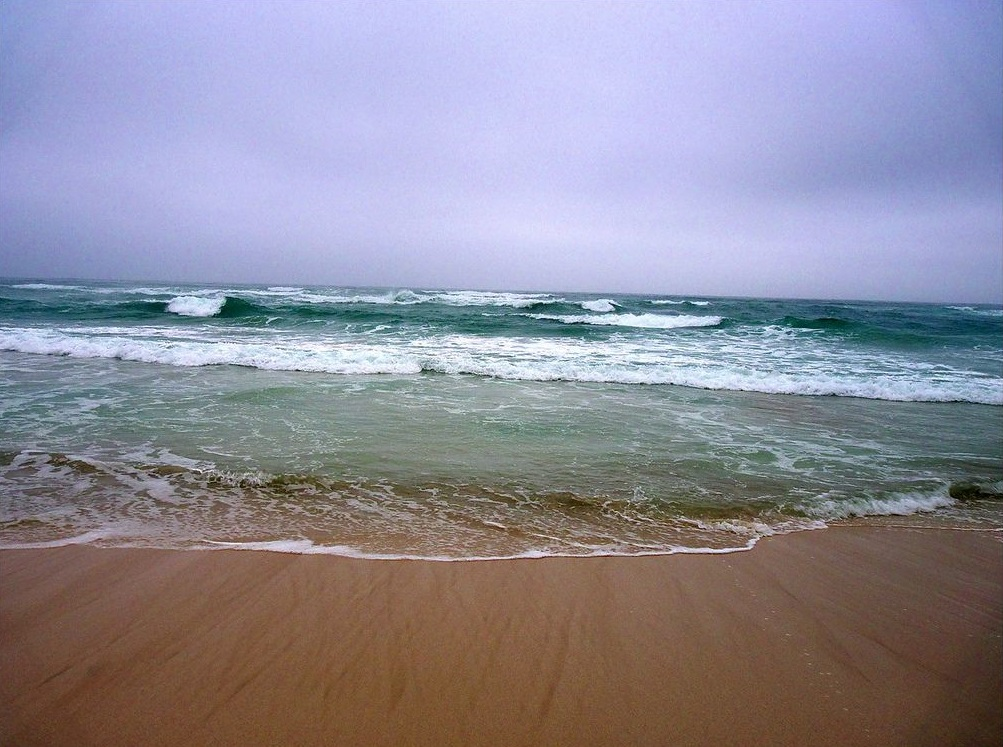 شاطئ الحافة Size:252.40 Kb Dim: 1003 x 747
