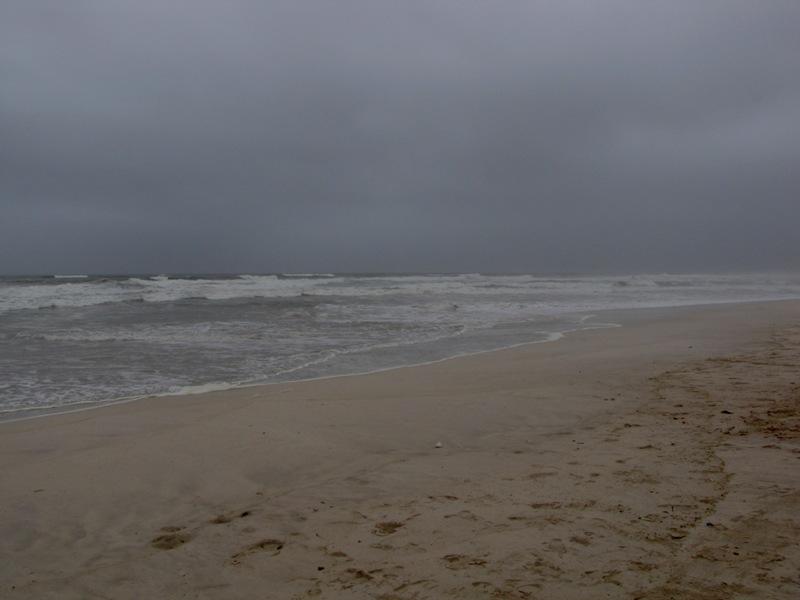شاطئ الحافة Size:82.20 Kb Dim: 800 x 600