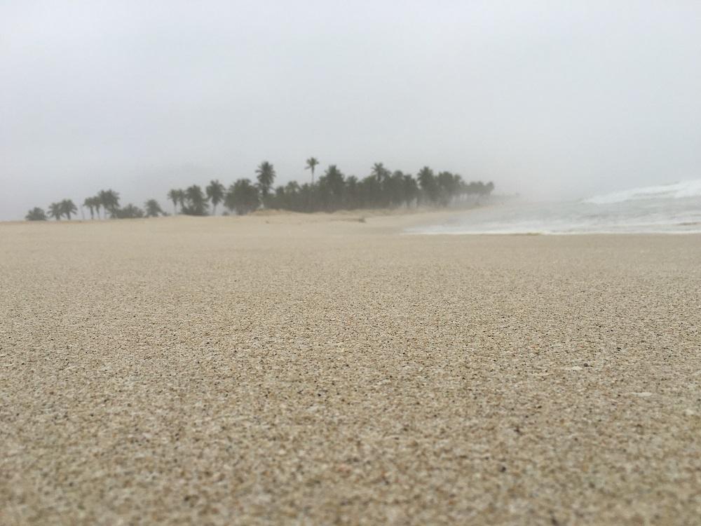 شاطئ الحافة 2016 Size:215.90 Kb Dim: 1000 x 750