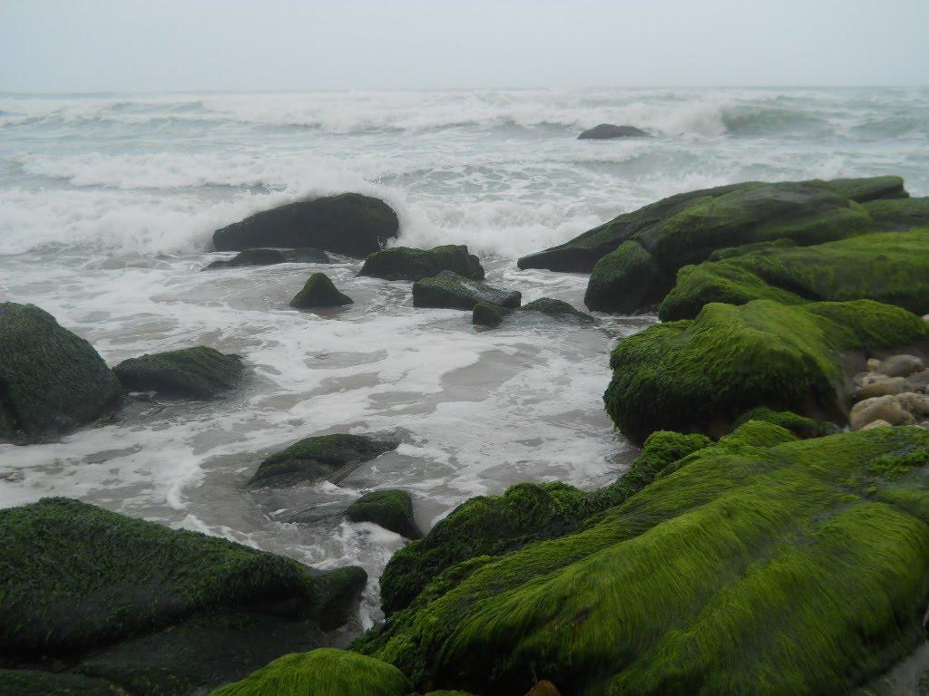 شاطئ الحوطة بولاية رخيوت Size:131.30 Kb Dim: 1024 x 768