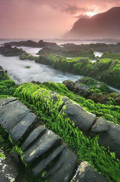 شاطئ الحوطة بولاية رخيوت Size:80.20 Kb Dim: 403 x 610