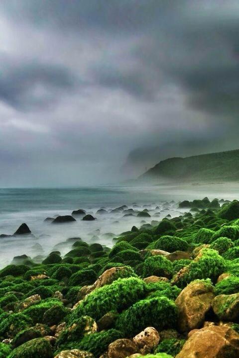 شاطئ الحوطة بولاية رخيوت Size:48.80 Kb Dim: 480 x 720