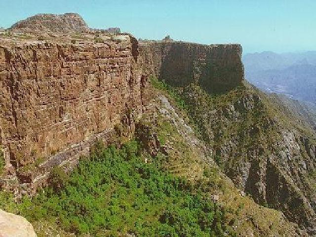 جبال عسير والطبيعه الخلابه 5_611_1060668915.jpg