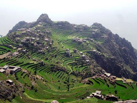 جبل النبي شعيب فى اليمن 575_223060_1293505276