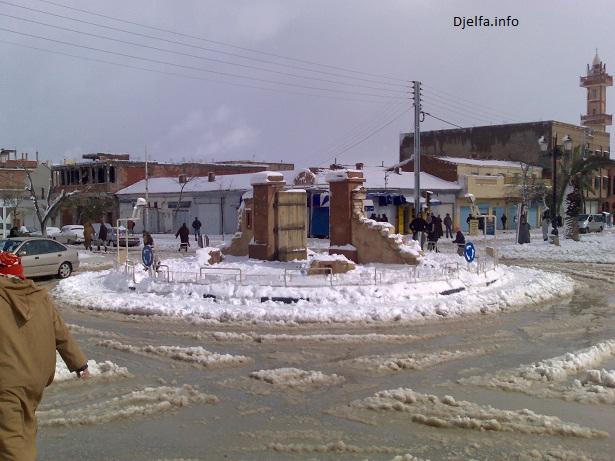 الجلفة الباهيةرقم17 عاصمة أولاد نائل الزاهية 651_94103_1238570511