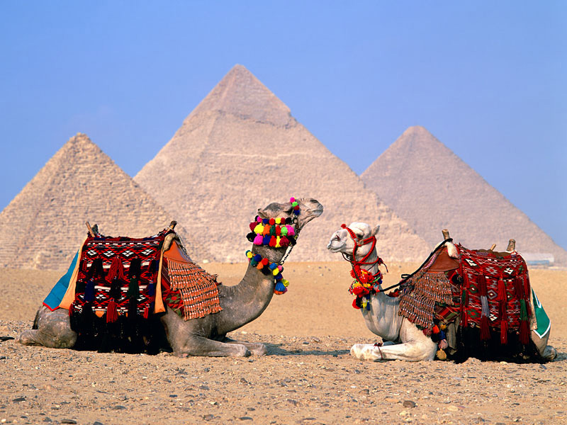 http://www.ask-aladdin.com/Egypt-Travel-Tips/egypt_culture.html