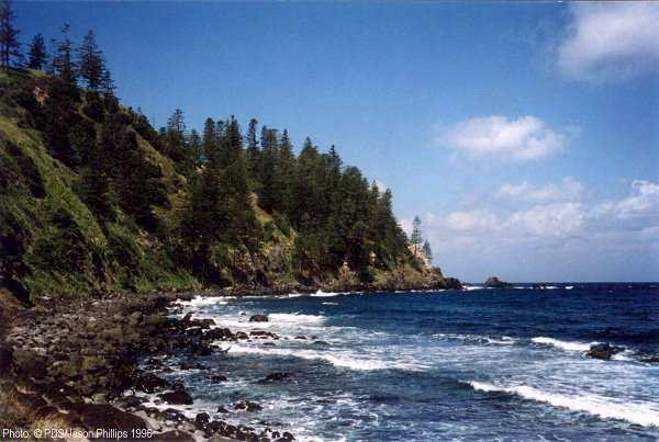 جزيرة نورفورك الاسترالية 828_2_1097953965.jpg