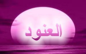 العنــــود